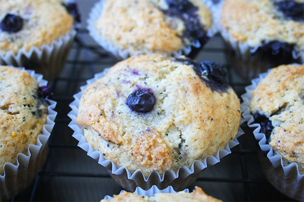 lemon poppyseed blueberry muffin 5