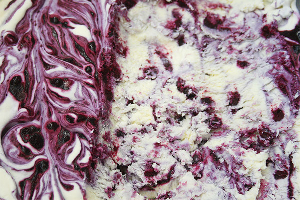blueberry cheesecake ice cream 7