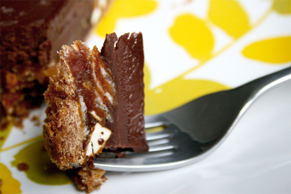 Chocolate_caramel_pretzel_n_chip_tart_5