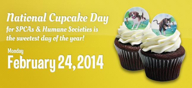 National Cupcake Day for the BC SPCA 2014