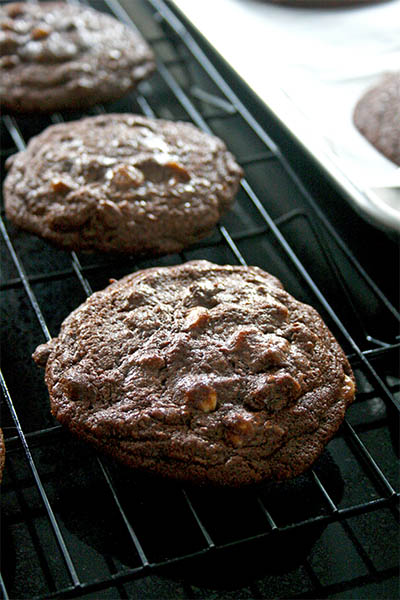 Chocolate Orange Ginger Cookies for Cookie of the Month ...